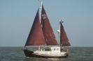 Sailing SOLO_1